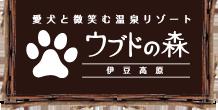 愛犬と微笑む温泉リゾートウブドの森伊豆高原