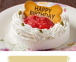 愛犬用お祝いケーキ